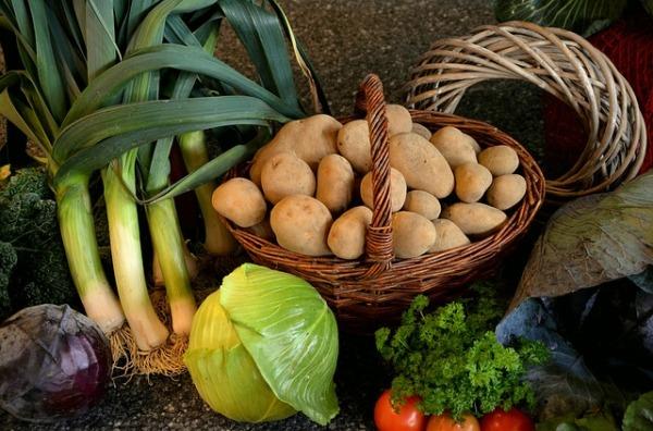 perunaa ja kaalia