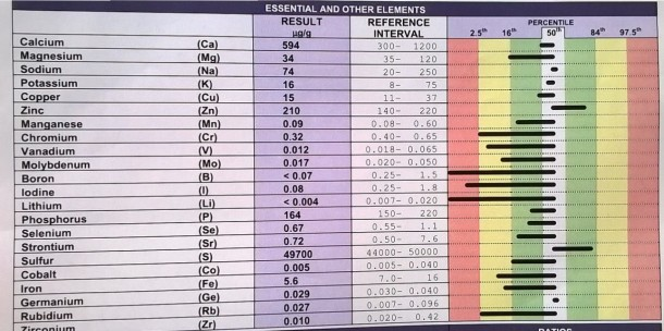 Hivenainetulokseni. Helpoin tapa hahmottaa kaaviota on katsoa, mitä kaikki aineet ovat vihreällä (hyvä), keltaisella (huonompi) ja mitkä punaisella (huonoin). Minulla ei ole mitään ainetta liikaa, vaan joko sopivasti, liian vähän tai ei juuri ollenkaan. Numeroarvot kertovat tarkempaa tietoa kuin pelkät mustat palkit väritaustoja vasten.