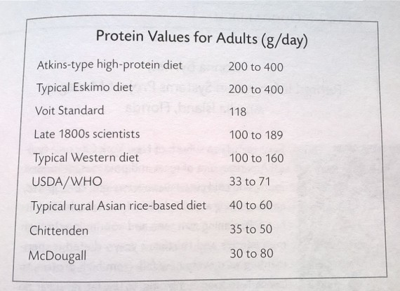 proteiinin saantisuosituksia