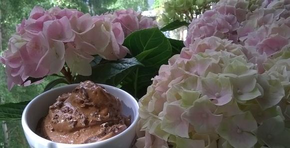 suklaa-maapähkinävoijäätelö