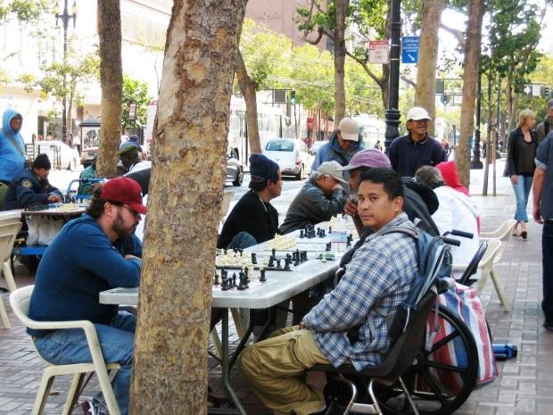 shakkia pelaamassa