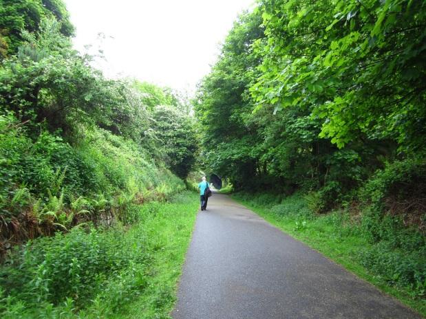 Tämä vihreä kävelybaana on todellinen löytö autojen ehdoilla toimivassa Corkissa.