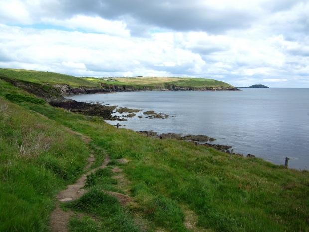 ballycotton cliff walk 11