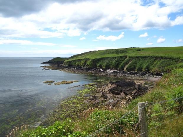ballycotton cliff walk 12