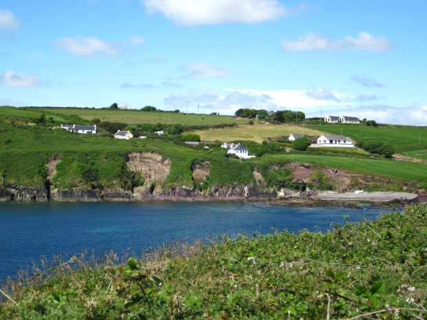 ballycotton cliff walk 8
