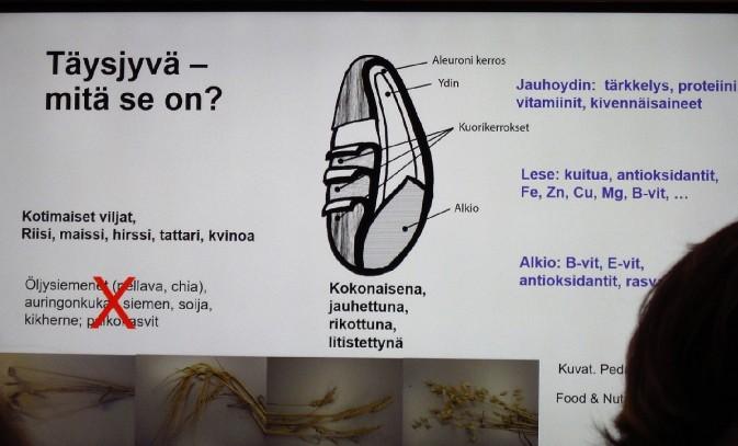 Yksi Kirsi Laitisen luentokalvoista.